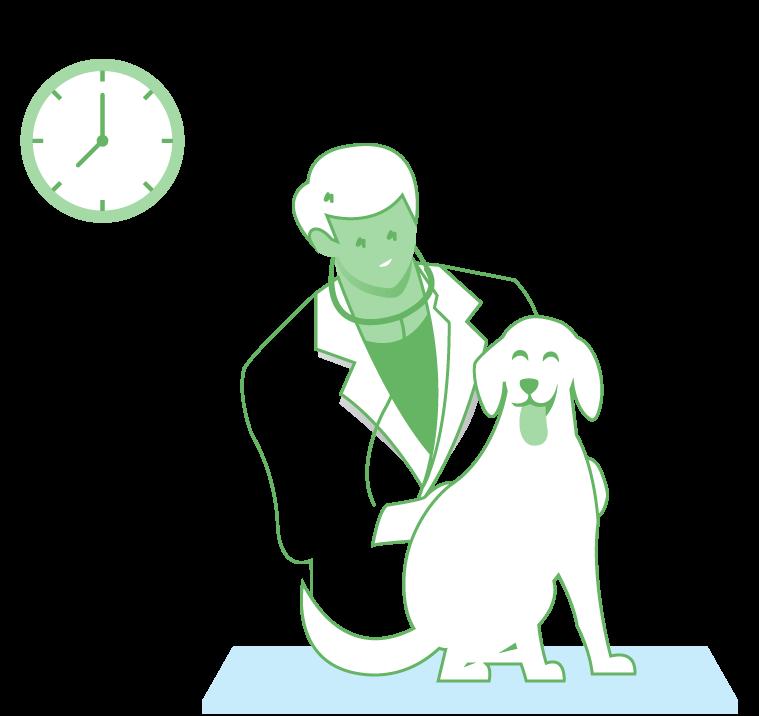 איור של וטרינר מטפל בכלב - בעיות אוזניים בבעלי חיים - צבע ירוק